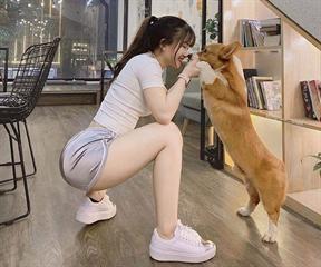 Hãy nuôi 1 bé cún, cuộc sống của bạn sẽ vui vẻ hơn